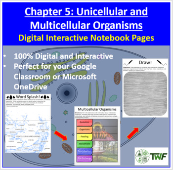 Unicellular & Multicellular Organisms - Digital Interactive Notebook Pages