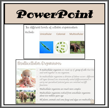 Unicellular, Multicellular and Colonial Organisms PowerPoint