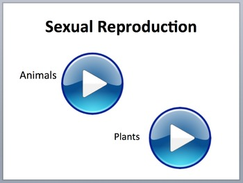 Unicellular and Multicellular Organisms - PowerPoint Lesson