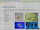 Unicellular v Multi-cellular Narrated Presentation