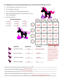 Dihybrid Crosses (F1 Dihybrid Cross Worksheet) by Cynthia ...