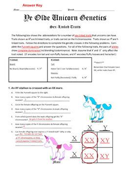 Unicorn Genetics Sex Linked Traits Punnett Squares Worksheet (Genetics)