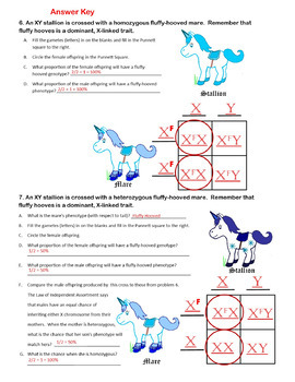 Unicorn Genetics Sex Linked Traits Punnett Squares ...