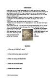 Unicorn Story & Comprehension Activity