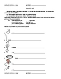 Unidad 3 Etapa 3 Level 2 Homework Packet