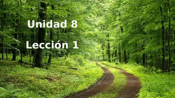 Unidad 8, Leccion 1 Vocabulary -  Avancemos 2
