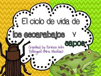 Unidad Ciclo de Vida - Escarabajos y Ranas Grados 1-3