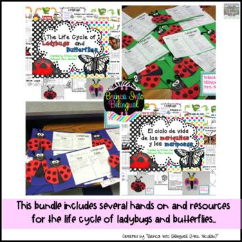 Unidad Ciclo de Vida - Mariquita y Mariposa Grados 1-3