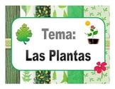 Unidad: Las Plantas