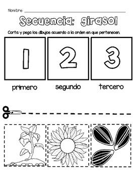 Unidad del girasol STEAM en español