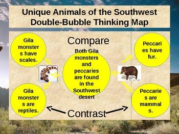 """Unique Animals"" - Treasures Reading - Compare and Contrast"