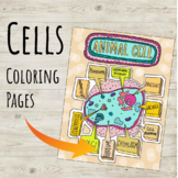 Unique Cells, DNA, Virus, Cell Organelles Coloring Page Series!