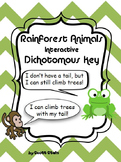 Rainforest Dichotomous Key