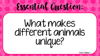 Unit 1-6 Essential Question Posters