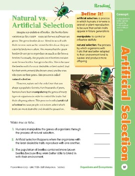 Unit 1: Artificial Selection: Concepts (Skill Sharpeners: Science)