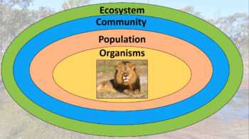 Unit 1 Biology Video 17: Ecosystems and Communities