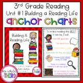 Unit #1 - Building a Reading Life - Anchor Charts