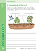 Unit 1: Decomposers: Concepts (Skill Sharpeners:Science)