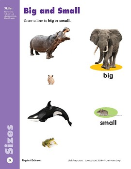 Unit 1: Different Sizes (Skill Sharpeners: Science)