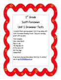 1st grade Unit 1 Grammar Test Scott Foresman Reading Street