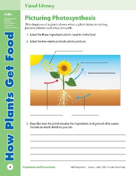Unit 1: How Plants Get Food: Concepts (Skill Sharpeners:Science)