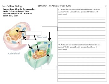 Unit 1: Introduction to Life Study Guide