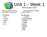 Unit 1 Scott Foresman Reading Street Focus Wall - 1st / First Grade