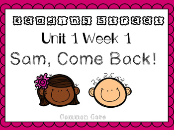 Unit 1 Week 1 PowerPoint. Sam,Come Back. Reading Street. First Grade.
