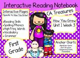 CA Treasures • How You Grew • Interactive Notebook • Unit 1 Week 3