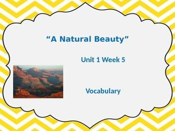 Unit 1 Week 5 Vocabulary