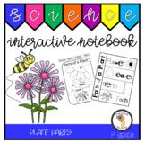 Plant Parts (1st Grade Notebook)