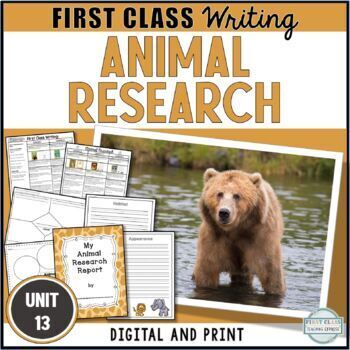 Unit 13 - Animal Research Report