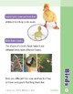 Unit 2: Birds (Skill Sharpeners: Science)