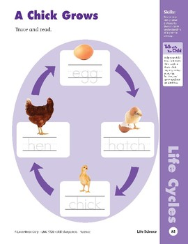 Unit 2: From Chick to Hen (Skill Sharpeners: Science)
