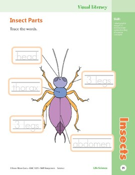 Unit 2: Insects (Skill Sharpeners: Science)