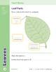 Unit 2: Leaves (Skill Sharpeners: Science)