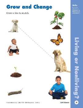 Unit 2: Living Things (Skill Sharpeners: Science)