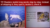 """Unit 2 Phonics Lucy Calkins """"Tackling Multi Syllable Words"""""""