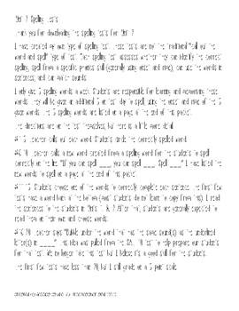 Unit 2 Spelling Tests