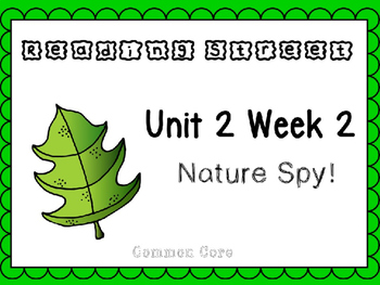 Unit 2 Week 2 Kindergarten Reading Street PowerPoint. Nature Spy!