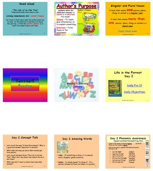 Unit 2 Week 5 - Lesson - Life in the Forrest - Lesson Bundle (2013, 2011, 2008)