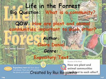 Unit 2 Week 5 - Lesson - Life in the Forrest - Lesson Bund