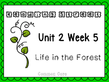 Unit 2 Week 5 Life In The Forest Reading Street Power Poin