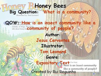 Unit 2 Week 6 - Lesson - Honey Bees - Lesson Bundle (Version 2013, 2011, 2008)