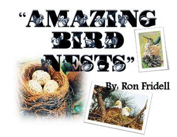 "Reading Street Unit 2 Week 5 "" Amazing Bird Nests"" Focus Wall"