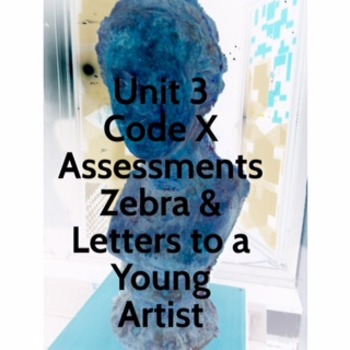 Unit 3 Code X Assessments; Zebra and Letters to a Young Artist