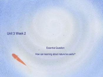 Unit 3 Week 2 Power Point Presentation Mc Graw Hill ELA Wonders Book