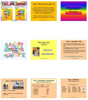 Unit 3 Week 3 - The Class Pet - Lesson Bundle (Version 2013 and 2011 only)