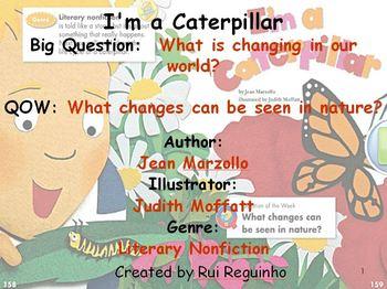 Unit 3 Week 5 - I'm a Caterpillar - Lesson Bundle (Version