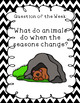 Unit 3 Week 6. Where Are My Animal Friends? Reading Street
